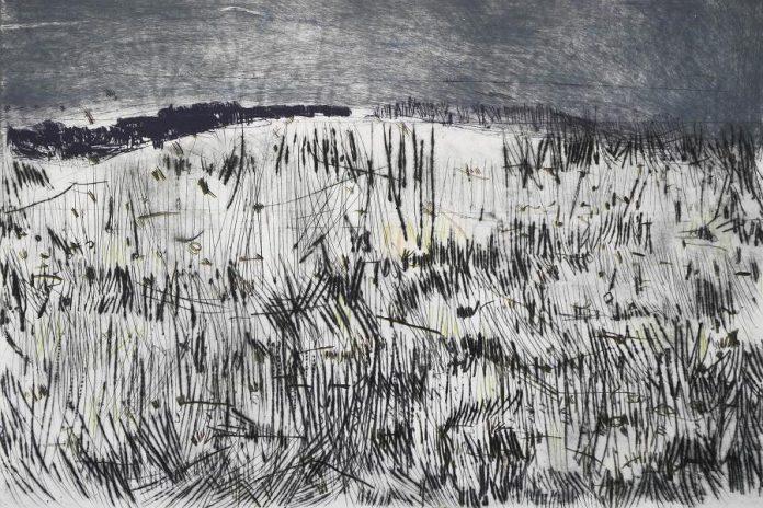 """""""Hill #1"""", of the Hills and Lines series by Jane LowBeer, will be on display at the Arts and Heritage Centre in Warkworth during September. (Photo courtesy of Jane LowBeer)"""