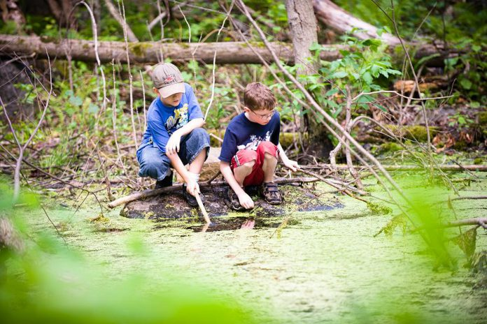 Camp Kawartha is dedicated to fostering stewardship. Both locations offer curriculum-linked and interactive outdoor programs that are both educational and fun for elementary and secondary students.  (Photo: Camp Kawartha)