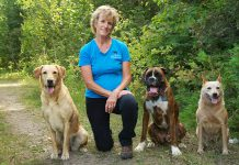 For Karen Laws, owner of Ontario Dog Trainer, training dogs has always been her passion. A certified dog trainer, she also educates owners on how to create a trusting and respectful relationship between human and dog.