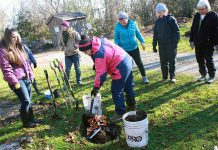 Volunteers plant a Bronte Oak tree at GreenUP Ecology Park to commemorate the countless hours of work they contributed to the park over the year. The Ecology Park Little Autumn Tree Sale on Sunday, October 15th from 10 a.m. to 4 p.m. will feature many native and locally grown trees at the lowest prices of the year to make way for 2018 stock. Fall is the best time to plant a tree as the cool and wet autumn conditions provide optimum conditions for tree roots to establish themselves before winter. (Photo: GreenUP)