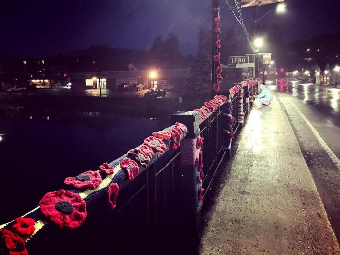 Some of the more than 2,000 hand-crafted poppies volunteers have installed on the Constable Thomas Kehoe Memorial Bridge across the York River in Bancroft. (Photo: Hospice North Hastings / Facebook)