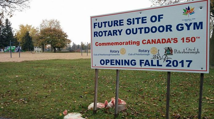 Although it's not opening this fall, the Rotary Outdoor Gym will be constructed at Beavermead Park. Proceeds from the 2017 Kawartha Rotary Online Auction will support the construction of the gym. (Photo: Bruce Head / kawarthaNOW.com)