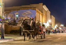 Horse-drawn wagon rides are one of the many activities available during Christmas in the Village in Millbrook on the evening of Thursday, December 7. (Photo: Marjorie McDonald)