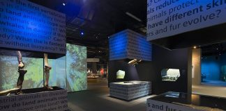 The Canadian Canoe Museum has selected Montreal-based GSM Project to assist with the design of visitor experiences in the exhibition galleries and collections centre of the planned new museum beside the Peterborough Lift Lock on the Trent-Severn Waterway. GSM Project has designed exhibits and visitor experiences for museums and science centres around the world, including the Lee Kong Chian Natural History Museum in Singapore pictured here. (Photo: GSM Project)