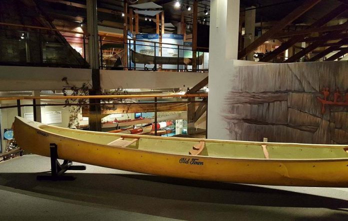 "One of Lightfoot's donated canoes. This canoe, which Lightfoot has paddled in Canada's far north, was the subject of his 1981 song ""Canary Yellow Canoe"". (Photo: Jeannine Taylor / kawarthaNOW.com)"