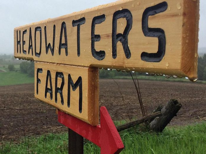 "Headwaters Community Farm & Education Centre is offering a ""Launch & Learn"" session about corporate and wellness day retreats offered at the farm on February 7. (Photo: Headwaters Community Farm & Education Centre / Instagram)"