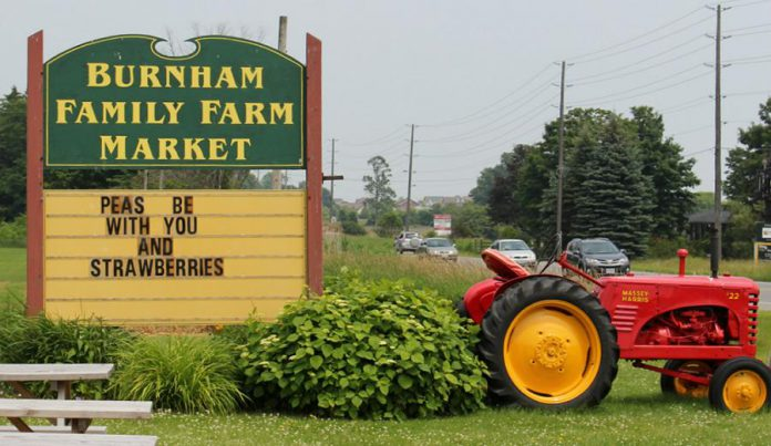 The Burnham Family Farm Market in Cobourg is open from May 1st to December 23rd. (Photo: Kawarthas Northumberland / RTO8)