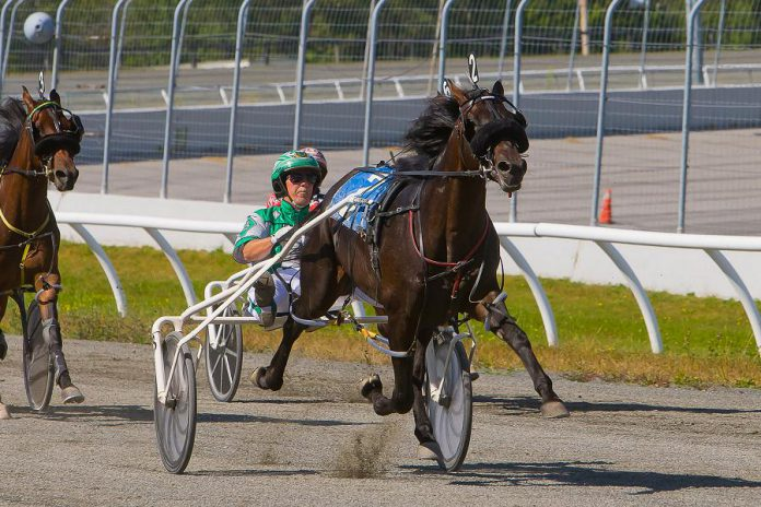 On March 23, 2018, the Ontario government announced $105 million in long-term funding to support the province's horse racing sector and additional supports for smaller racetracks and those experiencing financial shortfalls. The additional funds may help Kawartha Downs in Fraserville, which will lose 85 per cent of its revenue when Shorelines Casinos moves its 450 slot machines to the new casino in Peterborough. (Photo: Kawartha Downs)