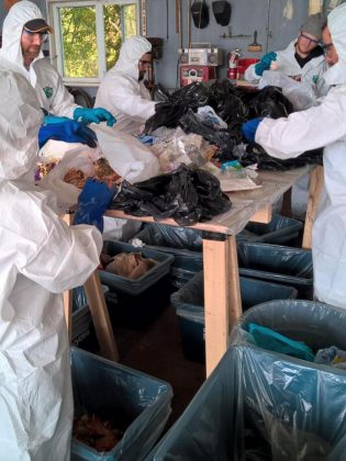 Fleming College students conduct a waste audit on behalf of the County of Peterborough. Waste audits capture waste generation habits by analyzing contents of garbage and recycling; results showed that 50% of residential garbage bags are filled with organic waste that could be diverted from landfill.  (Photo courtesy of GreenUP)