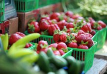 Locally grown strawberries are only a few months away! The Lakefield Farmers' Market is now accepting applications for new agricultural, prepared food, and artisanal vendors. The market opens for the season on Thursday, May 24th. (Photo: Lakefield Farmers' Market)