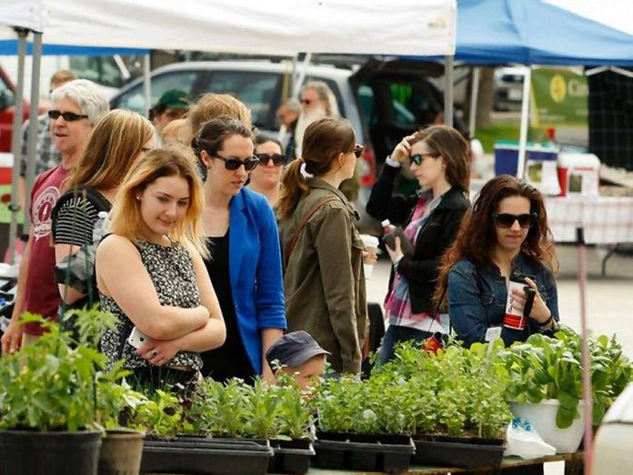 The Peterborough Downtown Farmers' Market opens for the 2018 season on Wednesday, May 2. To accommodate construction of the new urban park at Louis Street, this year's market will be located on Charlotte St. between George and Louis, which will be closed to traffic while the market runs from 8:30 a.m. until 2 p.m. every Wednesday. (Photo courtesy of Peterborough Downtown Farmers' Market)