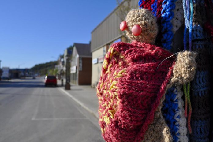 The hand-crafted turtles are intended to raise awareness among motorists to look out for turtles crossing local roads, as well as the work of Hospice North Hastings. (Photo courtesy of Knittervention)