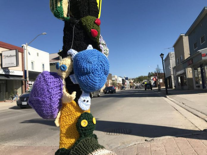 The hand-crafted turtles will remain on display until May 26, 2018. (Photo courtesy of Knittervention)