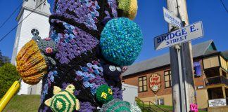 Residents and visitors to Bancroft, Ontario were greeted over the Victoria Day long weekend by knitted and crocheted turtles, hand-crafted by a volunteer group with Hospice North Hastings to raise awareness of local turtles and hospice. The turtles will remain on display until May 26. (Photo courtesy of Knittervention)