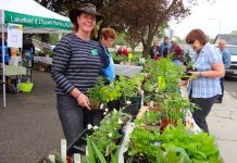 The Lakefield Horticultural Society is holding its annual plant sale, featuring high-quality and healthy potted plans grown in member gardens, on the morning of Saturday, May 19th in Lakefield. (Photo: Lakefield Horticultural Society)