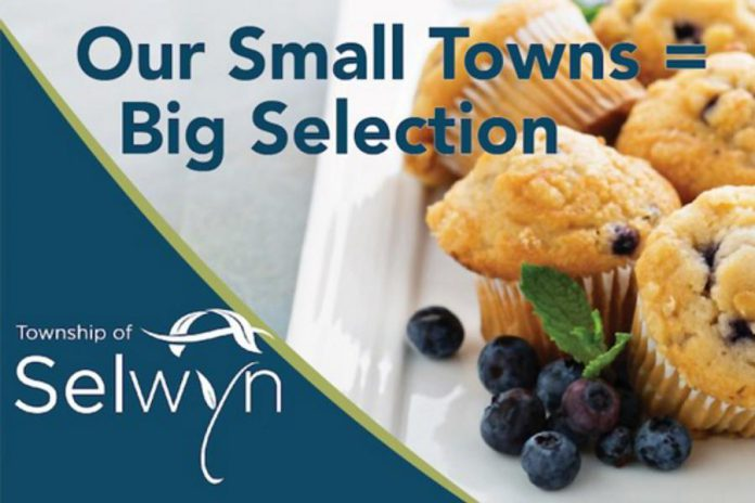 "Selwyn Township has endorsed a new economic development strategy and marketing plan developed by Chamber member Strexer Harrop & Associates. Pictured is a sample of a promotional campaign built around the tag line ""Our Small Towns ="". (Graphic: Strexer Harrop & Associates)"