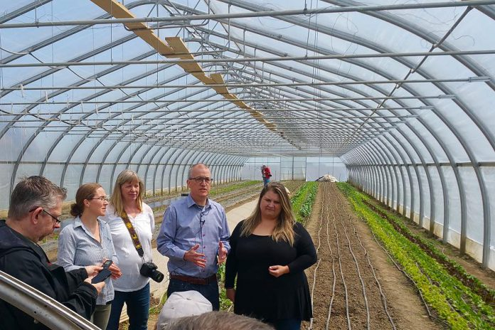 Representatives from the Peterborough Regional Farmers Network and several local farmers at Circle Organic Farmi in Millbrook on May 11, 2018 where they announced the creation of a new Peterborough farmers' market. (Photo courtesy of Peterborough Regional Farmers Network)