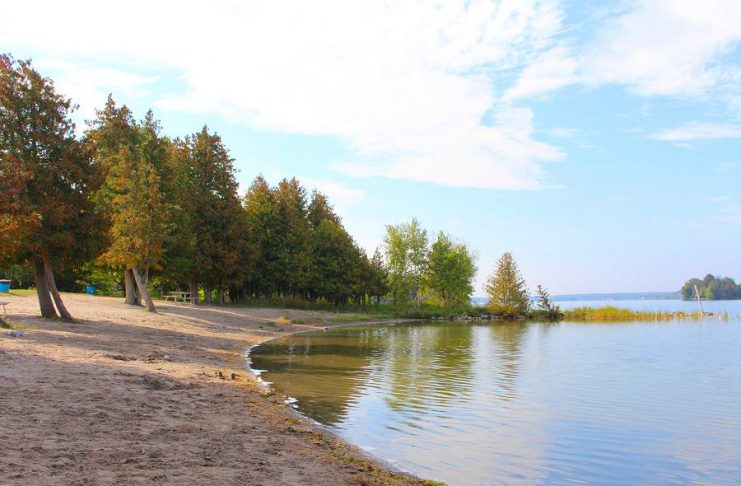 The beach at the Selwyn Beach Conservation Area. (Photo: Township of Selwyn)
