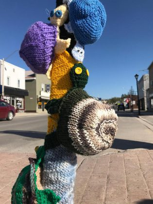 """The idea of the turtle """"yarn bomb"""" was hatched after Bancroft resident Kelly Wallace from the Think Turtle Conservation Initiative contacted Hospice North Hastings. (Photo courtesy of Knittervention)"""