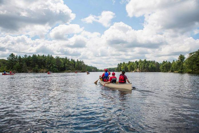 The Camp Startup participants can expect to have a lot of fun while improving their business knowledge and skills, with access to Camp Kawartha's high ropes course and archery range, canoeing on Clear Lake, and more. (Photo:  Marlon Hazlewood)