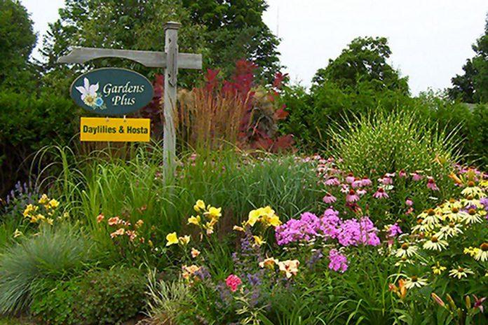 Gardens Plus