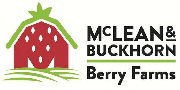 McLean and Buckhorn Berry Farms logo