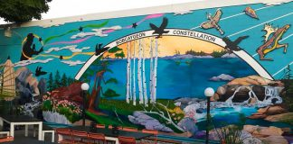 """The """"Bobcaygeon Constellation"""" mural by Fenelon Falls artist Penni Holdham that now adorns the wall of Foodland Bobcayehon facing the patio of Kawartha Coffee Co. (Photo: Kawartha Coffee Co. / Facebook)"""
