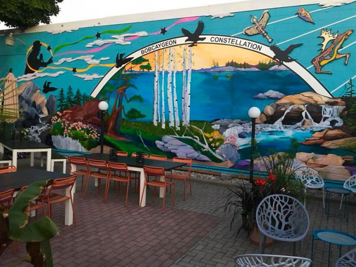 "The ""Bobcaygeon Constellation"" mural by Fenelon Falls artist Penni Holdham that now adorns the wall of Foodland Bobcayehon facing the patio of Kawartha Coffee Co. (Photo: Kawartha Coffee Co. / Facebook)"