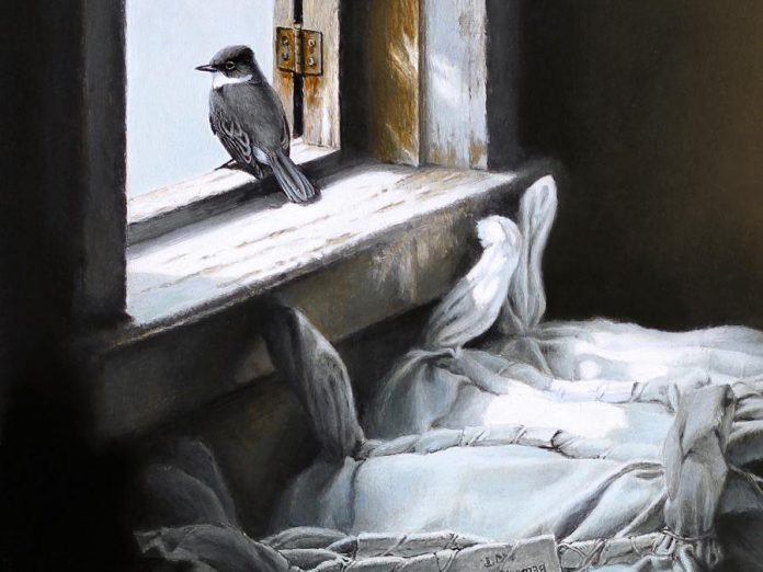 "A detail from ""Looking Out"", an original graphite study by artist Michael Dumas and the featured painting in ""The Lives of Birds"", the special exhibit at this year's Buckhorn Fine Art Festival from August 17 to 19, 2018. Ticket holders at opening night on Friday, August 17 will automatically be entered into a draw for this painting, valued at $1,000. (Photo courtesy of Buckhorn Fine Art Festival)"