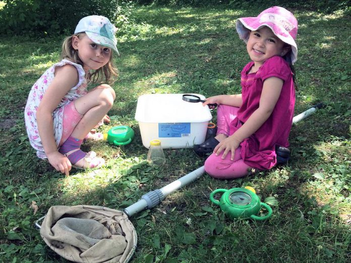 This year at Ecology Park Family Night, enjoy a stream study including dip netting and invertebrate identification along the banks of Meade Creek that runs right though the park.(Photo: Karen Halley)