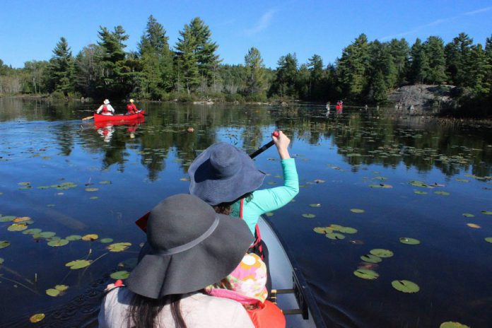 Kawartha Highlands Provincial Park in northern Peterborough County offers a backcountry experience for novice paddlers and seasoned trippers alike, with more than 100 campsites spread over six recommended loops accessible only by canoe or kayak.