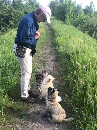 """At her large rural property in Bethany, Karen offers a unique """"boarding school"""" for dogs, where she completes initial training of dogs, with longer stays for dogs with serious behavioral issues.  (Supplied photo)"""