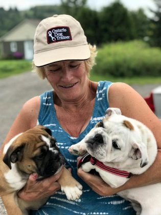 Karen admits to being naturally better with dogs than with people and she knows the efforts she   puts in are making a big difference in the lives of frustrated pet owners. (Supplied photo)