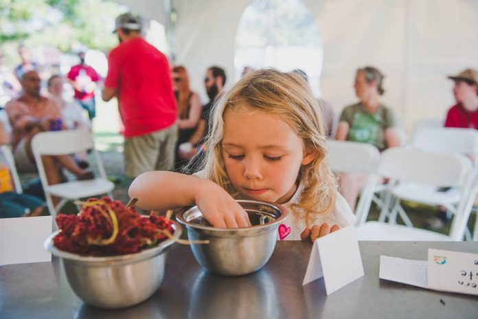 Cultivate is also offering a series of popup events leading up to this year's festival weekend on September 21st to 23rd in Port Hope, including several events cohosted by The Land Canadian Adventures. (Photo: Cultivate)