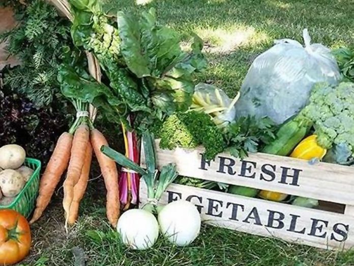 Lunar Rhythm Gardens will offer fresh vegetables at this year's Peterborough Vegfest. (Photo:  Peterborough VegFest / Facebook)