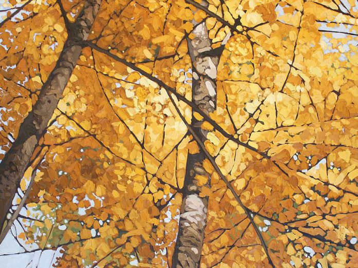 "A detail from ""Looking Up"" by Lakefield artist Peter Rotter, one of the artists participating in this year's  Kawartha Autumn Studio Tour. (Photo courtesy Art Gallery of Peterborough)"