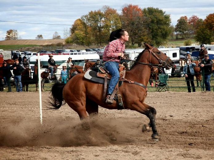 A cowboy competition is only one of many events and activities at the Norwood Fair over the Thanksgiving weekend.