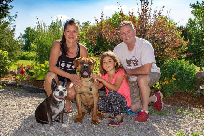 "Peterborough Humane Society honourary chair couple Jen and Tim Farquharson with their daughter Hannah and their dogs Jimmie and Roscoe (who was rescued from a Korean dog meat farm). Participating in, sponsoring, or donating to the ""Strutt Your Mutt"" fun dog walk on September 23, 2018 will help support the Peterborough Humane Society to continue its work to help over 2,000 animals annually that have been lost or rescued in our community. (Photo courtesy of Peterborough Humane Society)"
