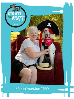 "There's a photo booth at ""Strutt Your Mutt"", so you may want to give your dog a chance to express their personality. (Photo courtesy of Peterborough Humane Society)"