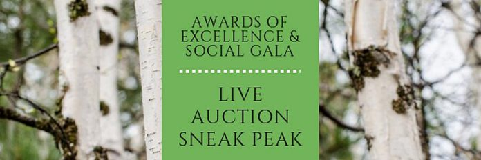 Awards of Excellence and Social Gala Live Auction
