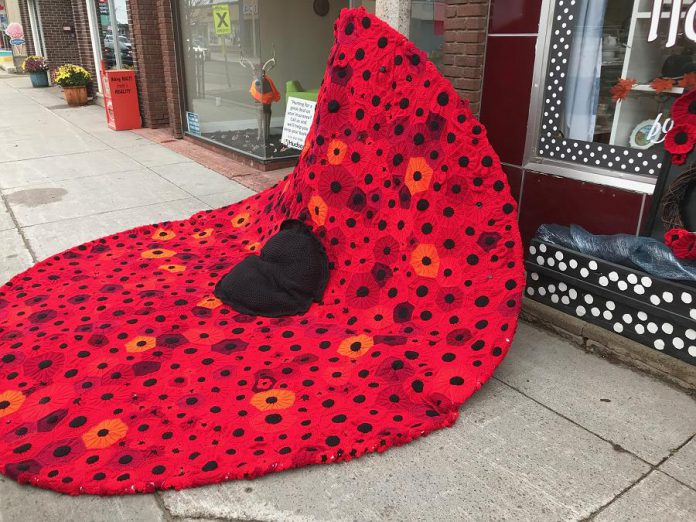 Volunteers from Bancroft's Hospice North Hastings sewed thousands of smaller hand-crafted poppies together to create an 11-foot tall poppy. Last year, the volunteers had covered the Constable Thomas Kehoe Memorial Bridge across the York River in Bancroft with more than 2,000 poppies. (Photo: Barb Shaw)