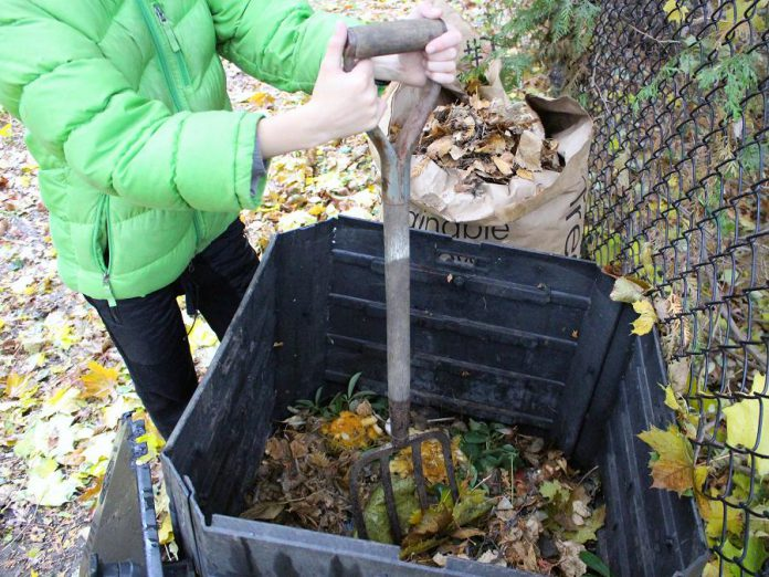 Place a bag of leaves beside your backyard composter. Over the winter months, you can add and mix leaves along with your kitchen waste to keep odours and pests away. (Photo: Karen Halley)