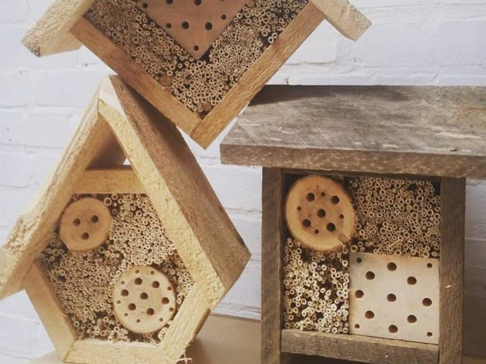 Three Sisters, a local eco-landscaping social enterprise, makes hand-crafted bee houses designed to house native bees. A unique and eco-friendly gift for the gardener on your list, you can get them at the GreenUP Store in downtown Peterborough. (Photo: Three Sisters)