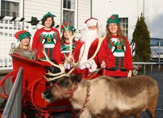 There are lots of holiday-themed events coming up! Stop by Village Dental Centre in Lakefield on Friday, November 23rd to see Santa Claus and his live reindeer Comet from 11 a.m. to 2 p.m.