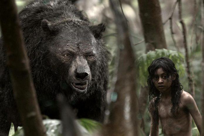 "The Netflix flim ""Mowgli: Legend of the Jungle"", a retelling of  Rudyard Kipling's masterpiece, is coming to Netflix Canada on December 7th. (Photo: Netflix)"
