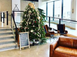 The lobby of VentureNorth in downtown Peterborough, the location of many of the area's economic development organizations, is decorated for the holidays in advance of a Christmas celebration, one of several business-related holiday celebrations on the afternoon of December 4, 2018. (Photo: VentureNorth)