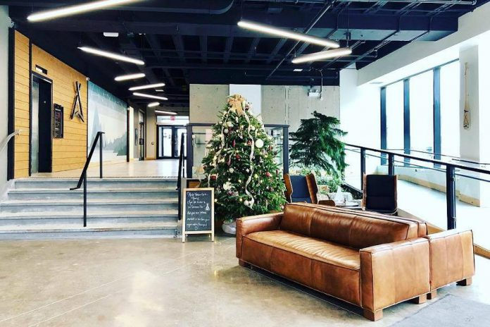 The now-decorated lobby of VentureNorth at 270 George Street North in downtown Peterborough is the location of a Christmas celebration from 3:30 to 5:30 p.m. on Tuesday, December 4th. (Photo: VentureNorth)