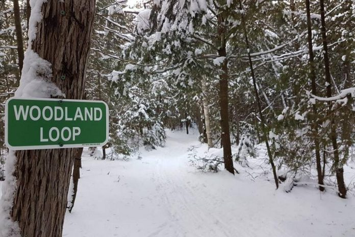 "Ken Reid Conservation Area features a number of trails, and  ""Christmas at Ken Reid"" on December 8, 2018 will include a scavenger hunt along the Escarpment Loop.  (Photo: Kawartha Conservation)"
