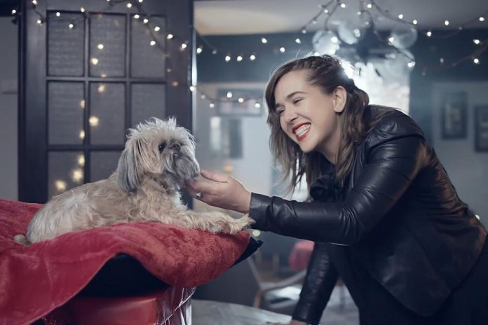 "Serena Ryder's new video for the title track from her new record ""Christmas Kisses"" supports the Ontario SPCA by featuring more than 20 dogs, with some dressed in festive outfits and some giving kisses to their humans. Several dogs and their owners from the Kawarthas appear in the video. (Screenshot)"