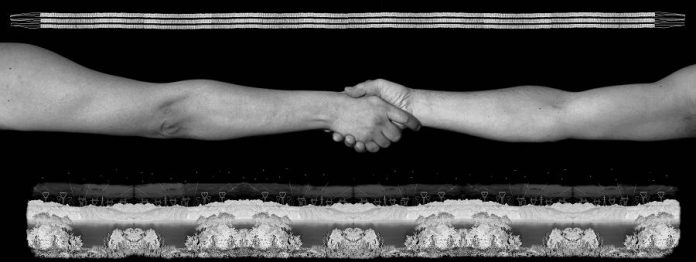 'Unity' (2008, black and white inkjet print, 101.6 x 304.8 cm) by Shelley Niro from the series Borders-Treaties. (Photo courtesy of Art Gallery of Peterborough)